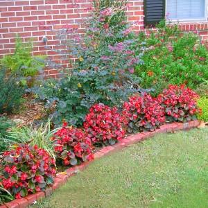 Garden-Plans-South-Central-3